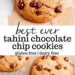 paleo tahini chocolate chip cookies