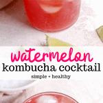 watermelon kombucha cocktail