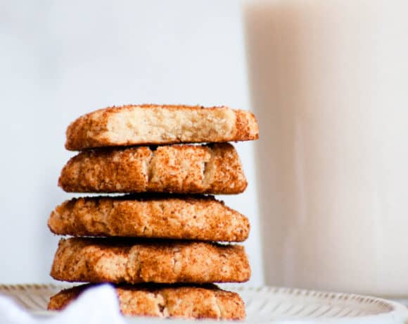 stack of healthy snickerdoodles
