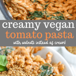 creamy vegan tomato pasta
